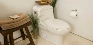 replacement-toilet-695x341